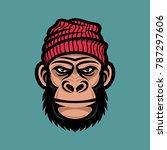 Monkey Head In A Knitted Cap....