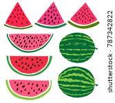 vector cartoon watermelon fruit ... | Shutterstock .eps vector #787342822