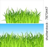 two grass backgrounds / vector / Contains the separated layers - stock vector