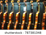 Row Of Violins In A Store