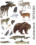 illustration with polar animals ... | Shutterstock .eps vector #78742381