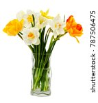 the bouquet of beautiful spring ... | Shutterstock . vector #787506475