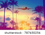 airplane flying over tropical... | Shutterstock . vector #787650256