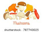 mushrooms edible mushrooming...   Shutterstock .eps vector #787743025