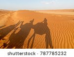 shadow of people riding on... | Shutterstock . vector #787785232