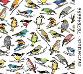 vector seamless pattern with... | Shutterstock .eps vector #787846696
