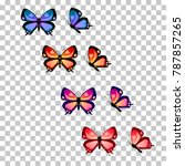 Colorful Butterfly Silhouette...