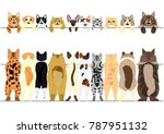 Stock vector standing cats front and back border set 787951132