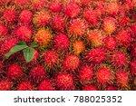 Rambutan With Leaf  Red Peel O...