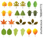different type of leaves vector | Shutterstock .eps vector #788049772