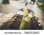 the traditional water dipper... | Shutterstock . vector #788052892