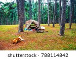 young girl camping trip in... | Shutterstock . vector #788114842