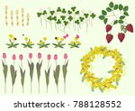 mimosa flowers and spring plant ... | Shutterstock .eps vector #788128552