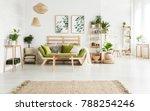 brown rug in spacious floral... | Shutterstock . vector #788254246