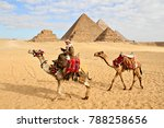 giza  egypt   january 2 2018 ... | Shutterstock . vector #788258656