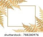 fern frond twigs frame vector... | Shutterstock .eps vector #788280976