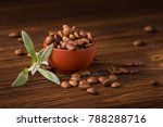roasted coffee beans in a plate ...   Shutterstock . vector #788288716