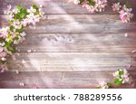 spring blooming branches on... | Shutterstock . vector #788289556