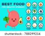 best food for strong stomach... | Shutterstock .eps vector #788299216
