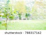 blur park with bokeh light... | Shutterstock . vector #788317162