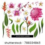 set of tropical flowers. vector ... | Shutterstock .eps vector #788334865