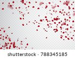Stock vector  rose petal falling confetti pelal vector stock 788345185