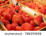fresh strawberry on the paper... | Shutterstock . vector #788359858