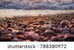 Colorful Seascape. Wild Pebble...