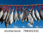 Thai Salted Fish Hanging Up To...