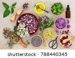 Herbal Medicine Preparation...