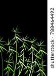 leaves background. bamboo... | Shutterstock .eps vector #788464492