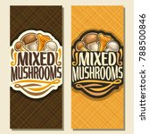 vector vertical banners for... | Shutterstock .eps vector #788500846