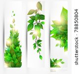 fresh green leaves banner set... | Shutterstock .eps vector #78850804