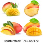 collection of mango isolated on ...   Shutterstock . vector #788520172