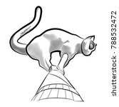 sculpture of a cat on the roof... | Shutterstock .eps vector #788532472