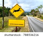 yellow sign with deer jumping... | Shutterstock . vector #788536216