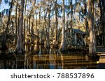 Small photo of Cabin in bayou in Uncertain, Texas
