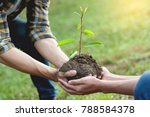 couple planting and watering a... | Shutterstock . vector #788584378