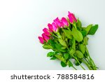 bouquet of pink roses on top... | Shutterstock . vector #788584816