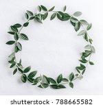 Green Leaves Circle - Fine Art prints