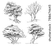 set of hand drawn trees  ... | Shutterstock .eps vector #788674645