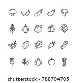 vegetables food black thin line ... | Shutterstock . vector #788704705