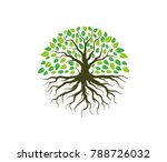 green forestry strong root tree ... | Shutterstock .eps vector #788726032