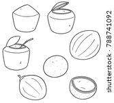 vector set of coconut | Shutterstock .eps vector #788741092