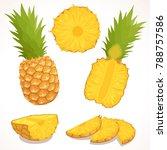 pineapple vector. a detailed... | Shutterstock .eps vector #788757586