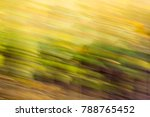green nature in motion as a... | Shutterstock . vector #788765452