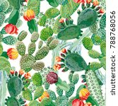 cactus vector seamless pattern... | Shutterstock .eps vector #788768056