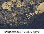 gardening  weeding weeds....   Shutterstock . vector #788777392
