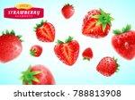 strawberry set  detailed... | Shutterstock .eps vector #788813908