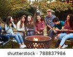 teenage friends sit round a... | Shutterstock . vector #788837986